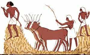 The World History of Agriculture